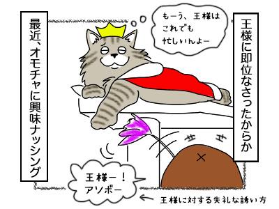 05102017_cat1mini.jpg