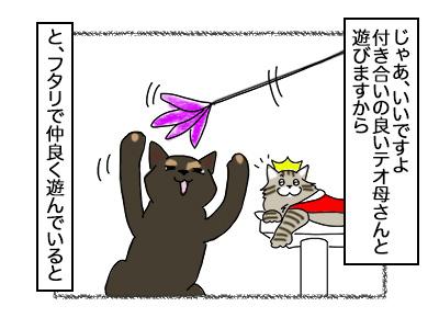 05102017_cat2mini.jpg