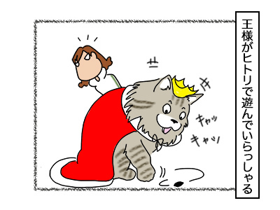 06102017_cat1mini.jpg
