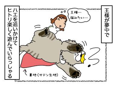 06102017_cat2mini.jpg