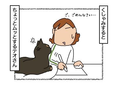 06112017_cat3mini.jpg