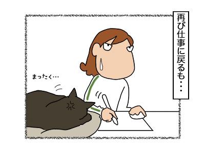 06112017_cat4mini.jpg