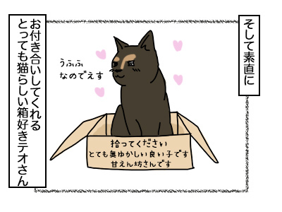 07102017_cat2mini.jpg