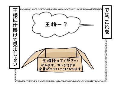 07102017_cat3mini.jpg