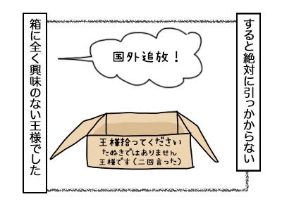 07102017_cat4mini.jpg