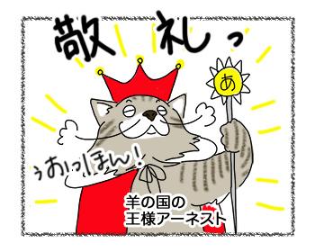 07102017_cat5mini.jpg