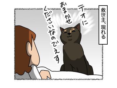 07112017_cat3mini.jpg