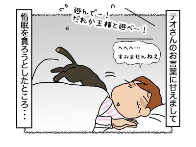 07112017_cat4mini.jpg