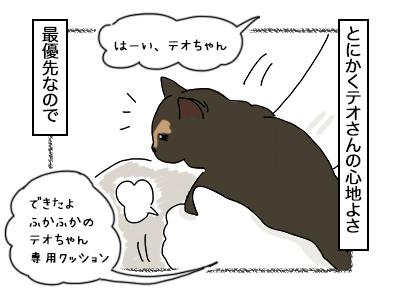 08102017_cat3mini.jpg