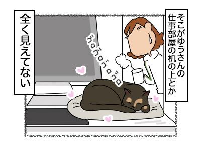 08102017_cat4mini.jpg