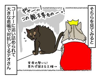 08112017_cat3mini.jpg