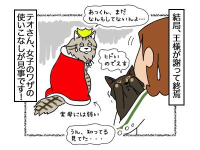 08112017_cat4mini.jpg