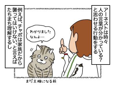09102017_cat1mini.jpg