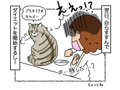 09102017_cat4mini.jpg