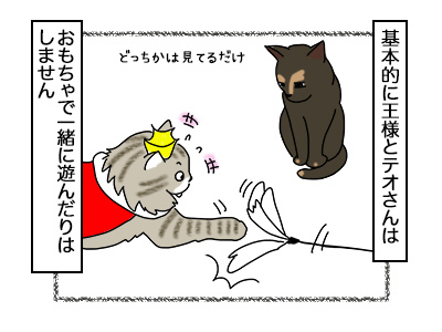 09112017_cat1mini.jpg