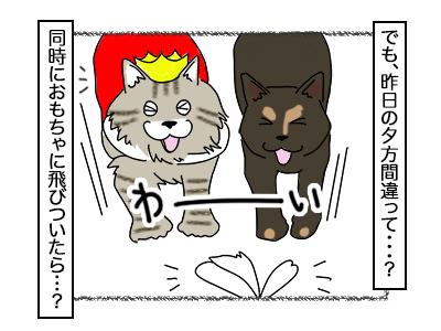 09112017_cat2mini.jpg