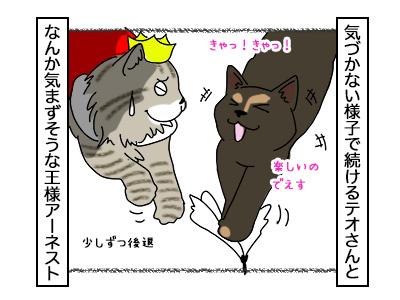 09112017_cat3mini.jpg