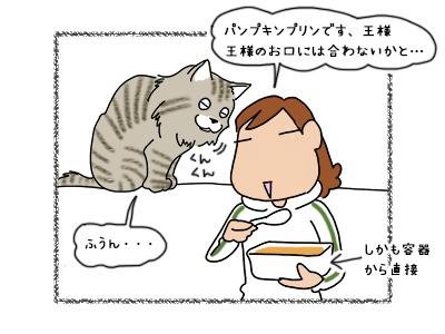 10102017_cat2mini.jpg