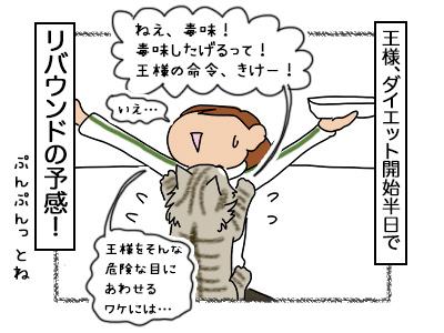 10102017_cat4mini.jpg