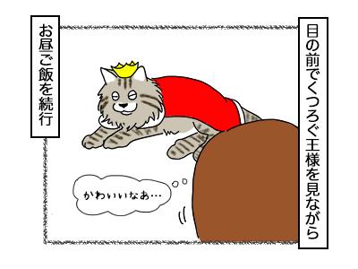 11112017_cat2mini.jpg