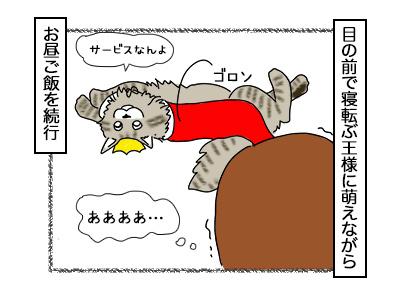 11112017_cat3mini.jpg