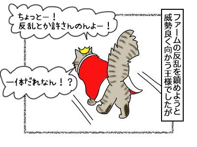 12102017_cat2mini.jpg