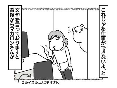 12122017_cat2mini.jpg