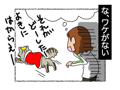 13112017_cat5mini.jpg