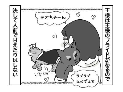 13122017_cat1mini.jpg