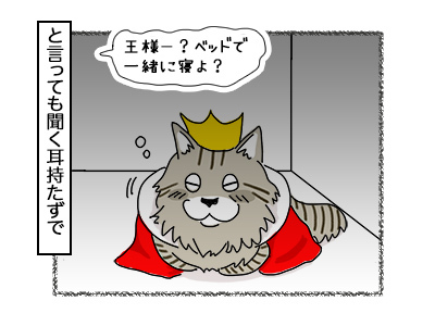 14112017_cat3mini.jpg