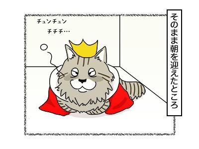 14112017_cat4mini.jpg