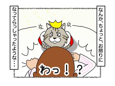 14112017_cat5mini.jpg