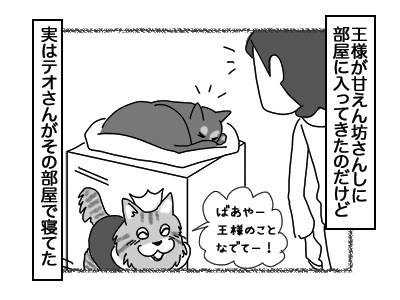 14122017_cat1mini.jpg