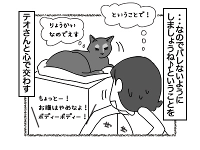 14122017_cat4mini.jpg