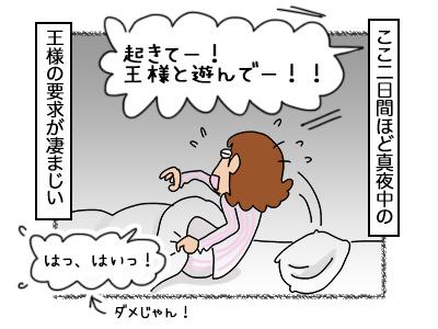 16102017_cat1mini.jpg