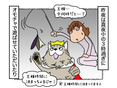 16102017_cat2mini.jpg