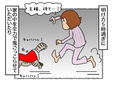 16102017_cat3mini.jpg