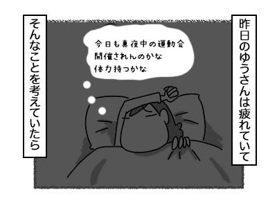 17102017_cat1mini.jpg