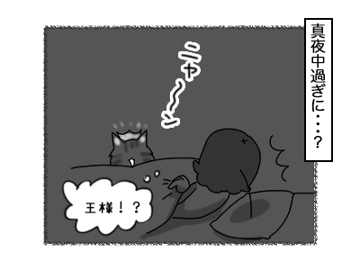 17102017_cat2mini.jpg
