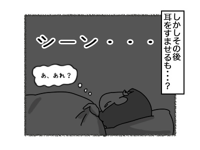 17102017_cat3mini.jpg
