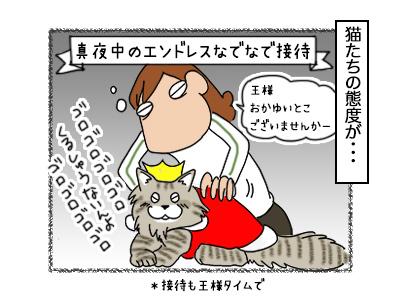 18102017_cat2mini.jpg