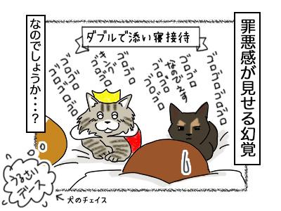 18102017_cat4mini.jpg