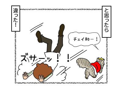 18112017_cat4mini.jpg