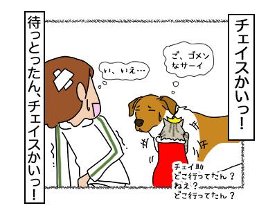 18112017_cat5mini.jpg
