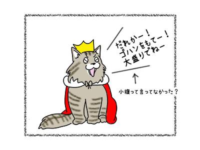 19102017_cat2mini.jpg