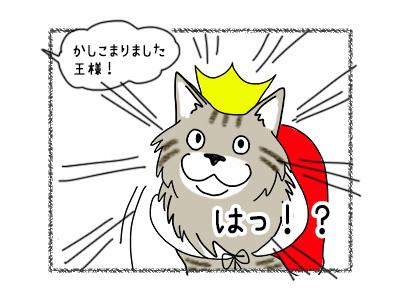 19102017_cat3mini.jpg