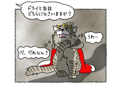 19102017_cat4mini.jpg