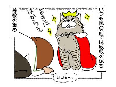 19112017_cat1mini.jpg