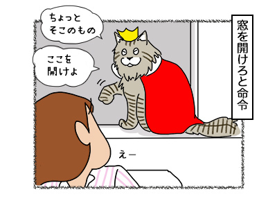 21112017_cat2mini.jpg