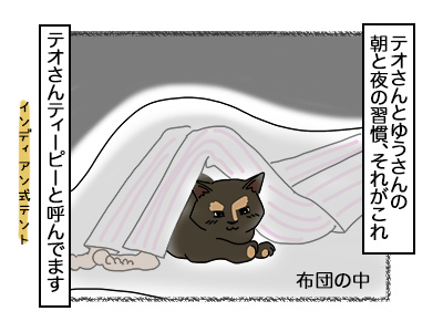 22112017_cat1mini.jpg